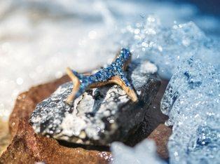 Wild Crystal Anhänger